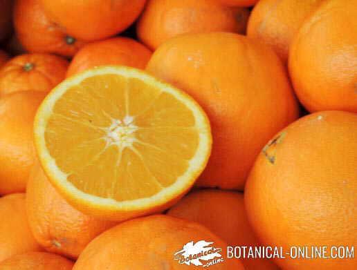 Naranjas mostrando su pulpa y su piel