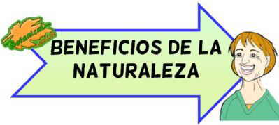 beneficios contacto con la naturaleza