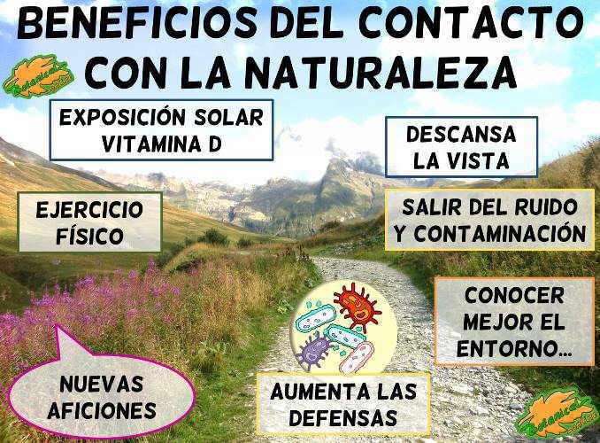 beneficios contacto naturaleza ejercicio aire libre