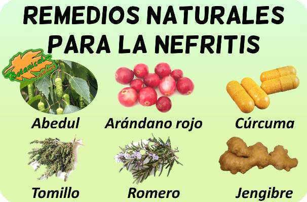 nefritis plantas medicinales remedios suplementos tratamiento natural