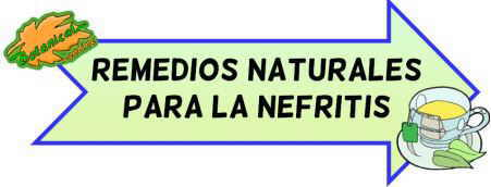 remedios naturales nefritis