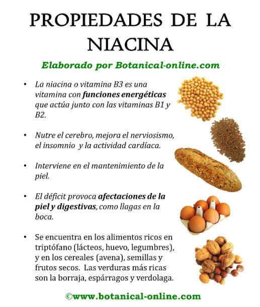 Propiedades de la niacina