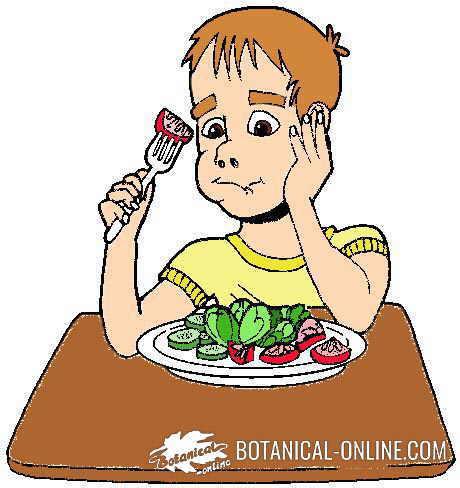 Dieta dash cardiosaludable para la hipertensión