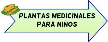 plantas medicinales para niños