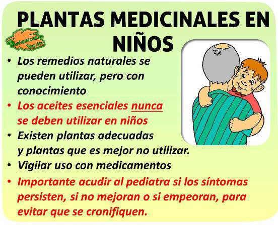plantas medicinales y remedios caseros en bebes niños pediatria