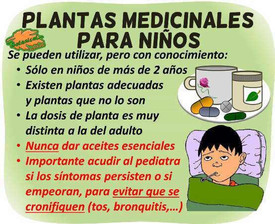 plantas medicinales y remedios caseros para niños