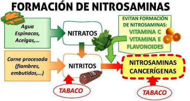 Esquema de los alimentos con nitritos nitratos y nitrosaminas