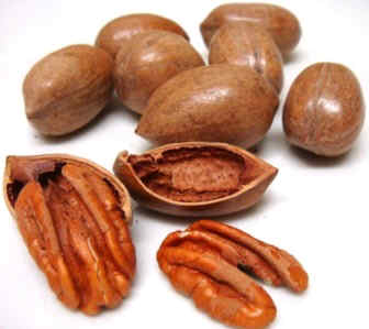 properties of pecans.