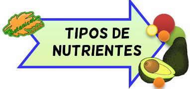 tipos de nutrientes existen