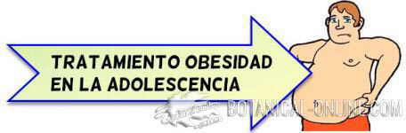 tratamiento natural obesidad adolescencia