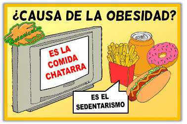 Que Causa La Obesidad Related Keywords - Que Causa La