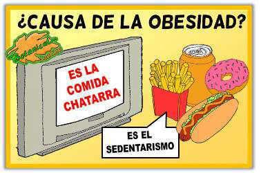 las causas obesidad son el sedentarismo y la comida chatarra, entorno ambiente obesogenico, alimentacion