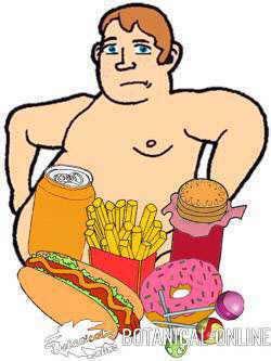 dibujo obesidad comida chatarra