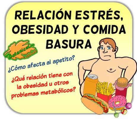 relacion estres cortisol sobrepeso y obesidad