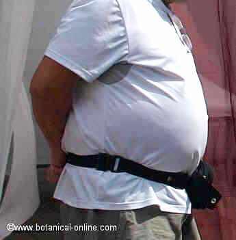 obesidad produce mala circulación