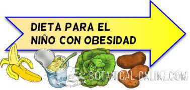 dieta niño obeso obesidad infantil