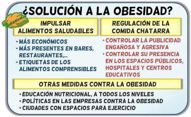 debate obesidad entorno ambiente obesogenico obesidad infantil epidemia comida chatarra basura salud publica educacion nutricional