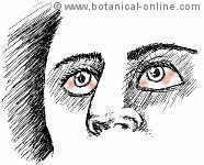 irritacion ocular en intoxicación química