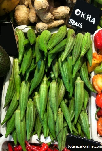 Okra in an European market stall