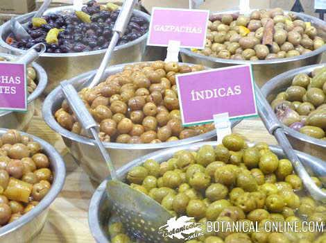 olivas mercado
