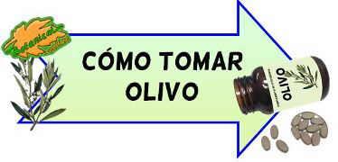 cómo tomar olivo
