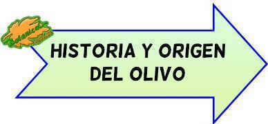 historia y origen del olivo