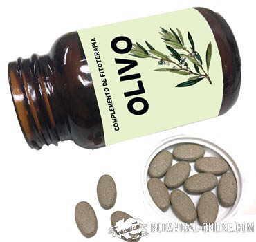 complemento alimenticio hojas de olivo