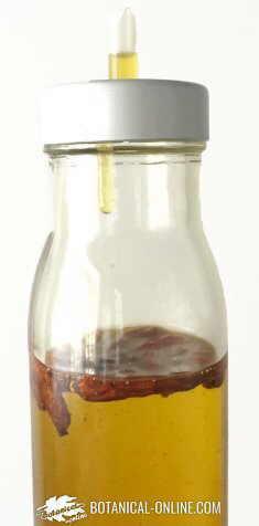 olvanil, antiinflamatorio de aceite de oliva y chile