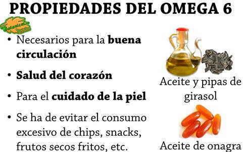 propiedades del omega 6 y alimentos ricos