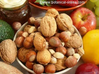 Dry fruits in the Mediterranean diet
