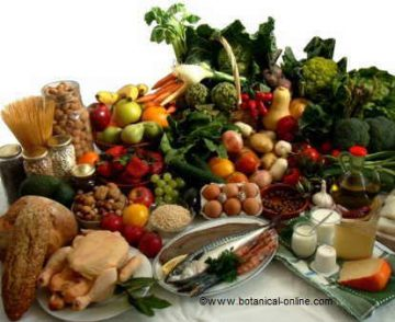 dieta variada