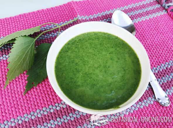 sopa de ortiga