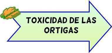 toxicidad de las ortigas