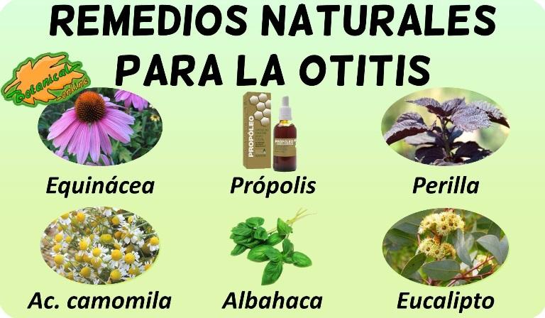 remedios para la otitis con plantas medicinales