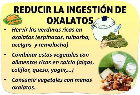 eliminar oxalatos acido oxalico alimentos