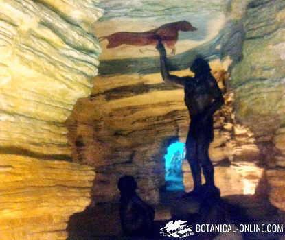 paleo cueva