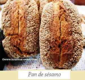 pan de sesamo