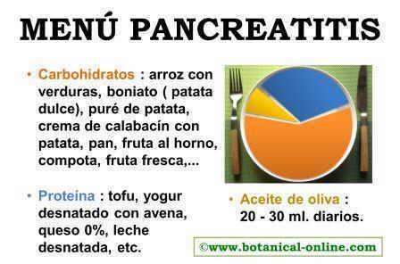 Carbohidratos, proteínas y grasas para la pancreatitis