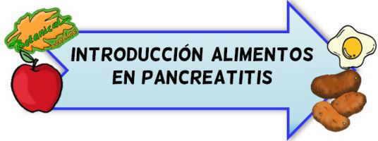 introduccion alimentos pancreatitis