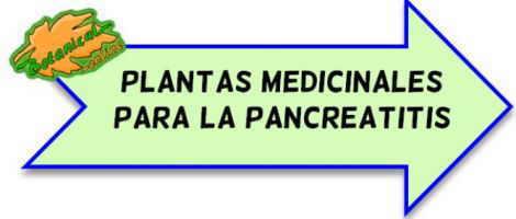 plantas medicinales pancreatitis