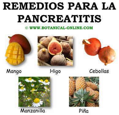 Remedios para la pancreatitis