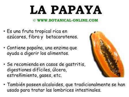 Propiedades de la papaya, zapote o lechosa