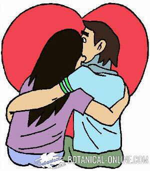 dibujo pareja enamorados novios amor dia san valentin