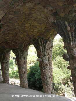 columnas jardines parque güell