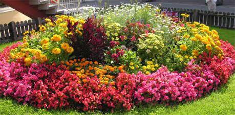 macizo de flores