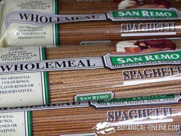 pasta de trigo