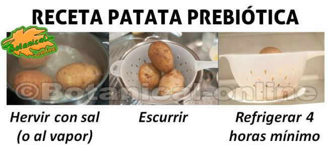 receta de patata prebiotica paso a paso