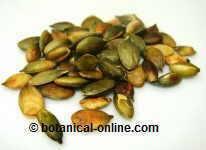 semillas de calabaza para los gusanos intestinales