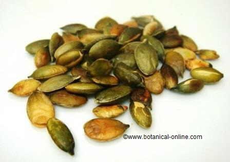 Pepitas, pipas o semillas de calabaza para expulsar tenias