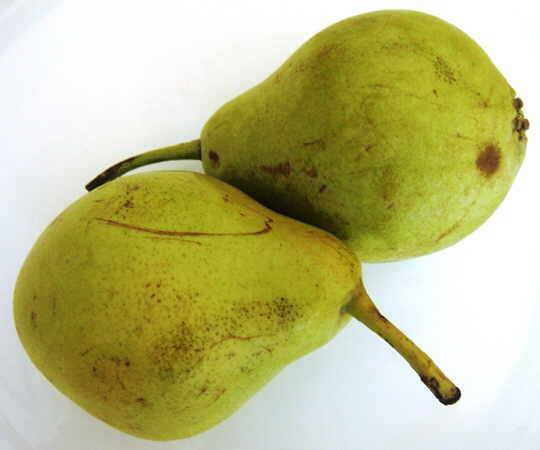 pera fruta